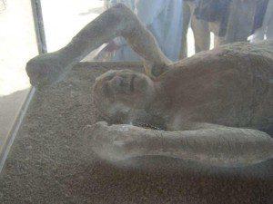 Pompeji Gipsausguss