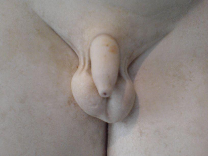 Penis 04