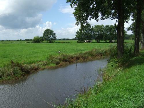 Landschaft in Ostfriesland