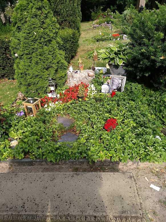 Grab von Rio Reiser im Juli 2018