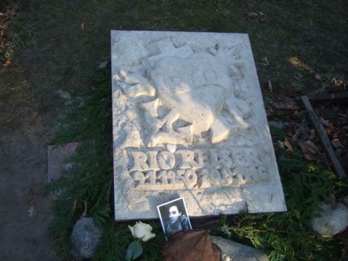 Rio Reisers Grab in Berlin, Februar 2011, mit Grabstein aus Fresenhagen