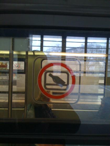 Flaschen nicht aus dem Fenster werfen (S-Bahn Berlin)