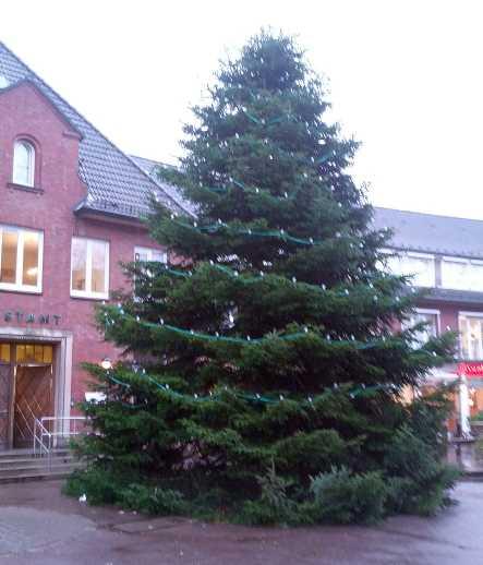 Weihnachten 2013 Baum