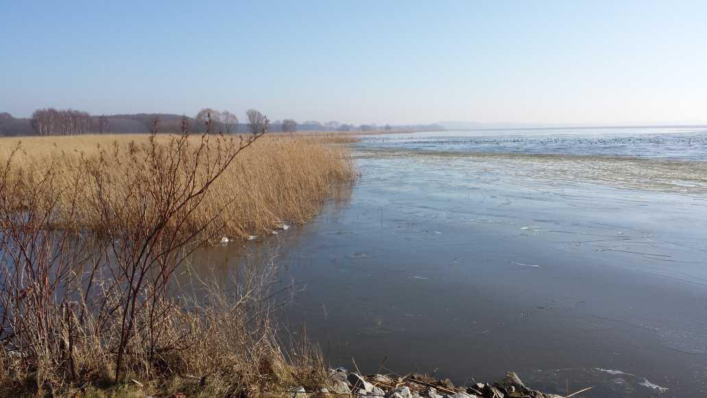 Achterwasser 2015 a