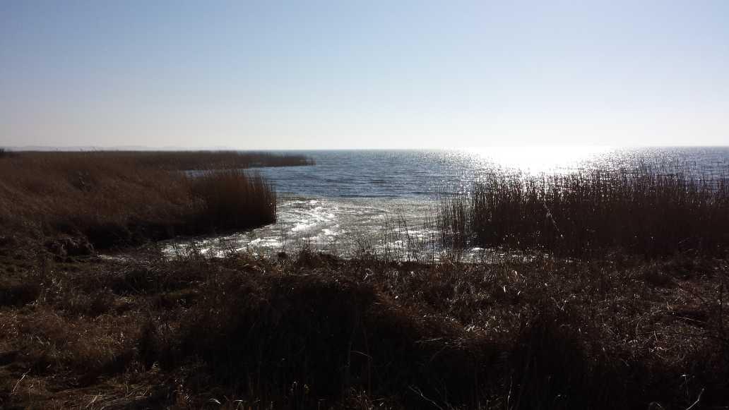 Achterwasser 2015 b