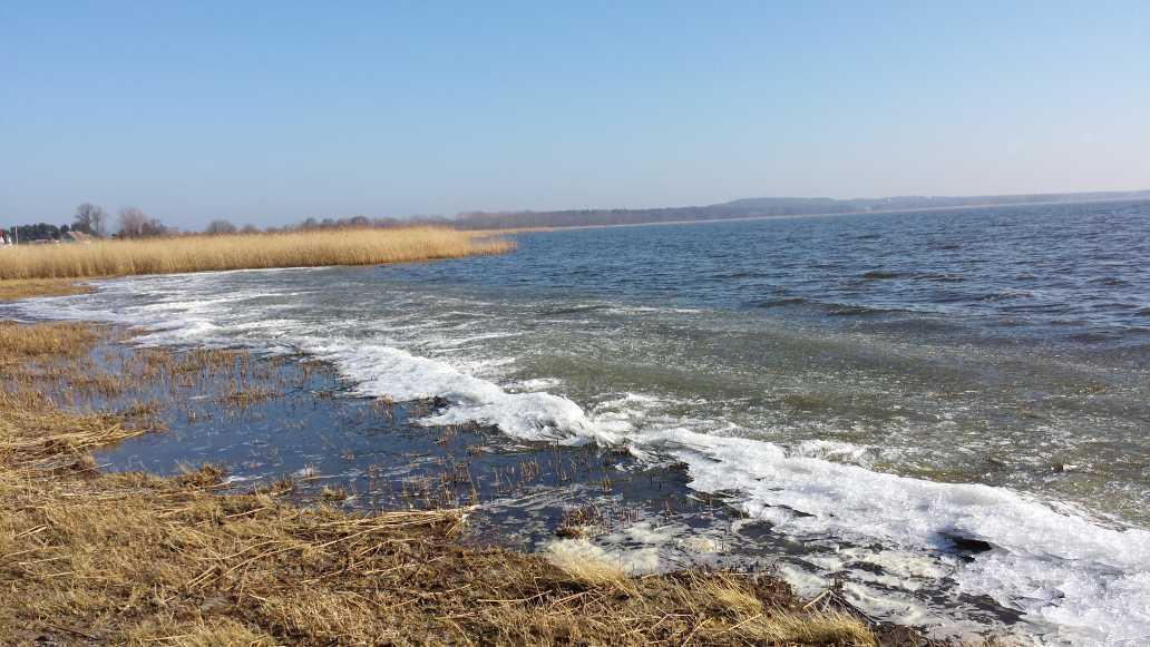 Achterwasser 2015 d
