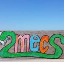2mecs