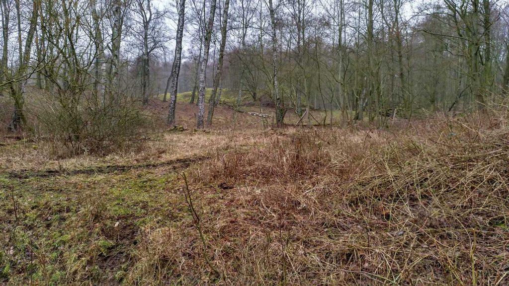 Naturschutzbgebiet Höltigbaum
